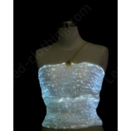 EL Fiber Optics Top