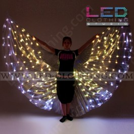 LED Wings with mixed color ultrabright LEDs